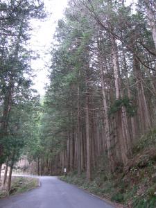 Nagano0410_08