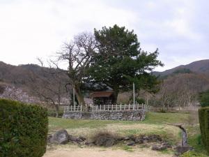 Nagano0411_03